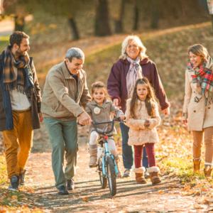 Familientherapie Wolf Kirchmann